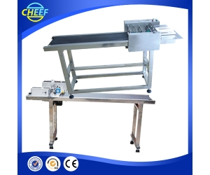 CE approved wooden toothpick packaging machine / cheap bamboo chopstick packing machine / China chopstick