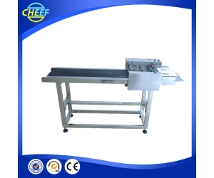 Rice Cake Packing Machine/Noodles Packing Machine/Snack Packaging Machine with back side seal