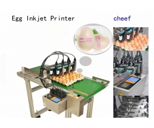 manufacturer supply high efficiency eggs-specific inkjet printers with a 2-meter conveyor
